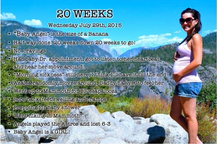 Week 20