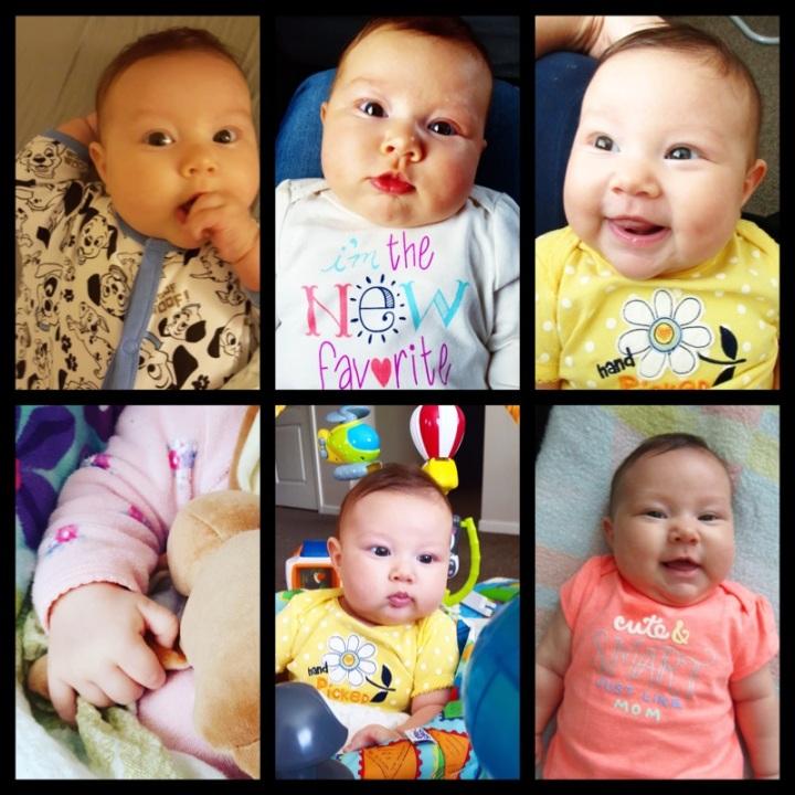 Azalea 2 month1