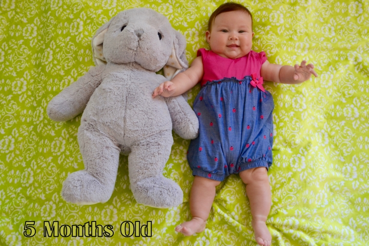 5 months bunny
