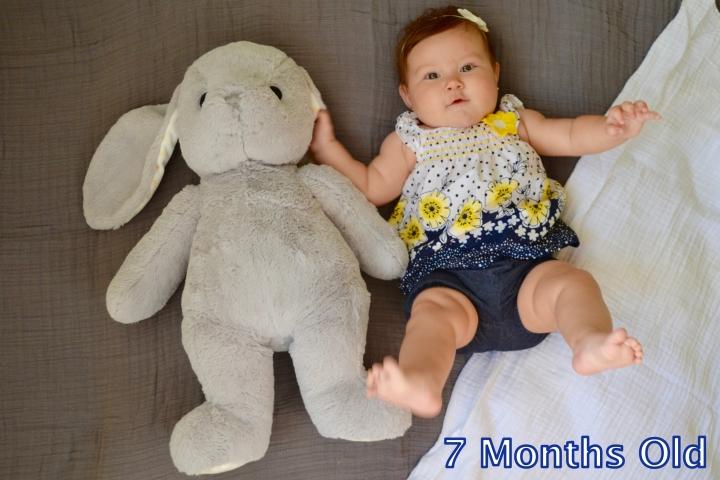 Zay 7 months bunny