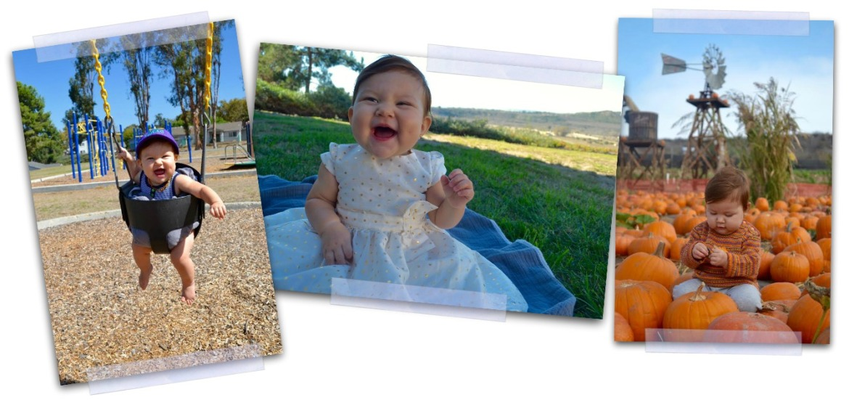 azalea-about-me-collage